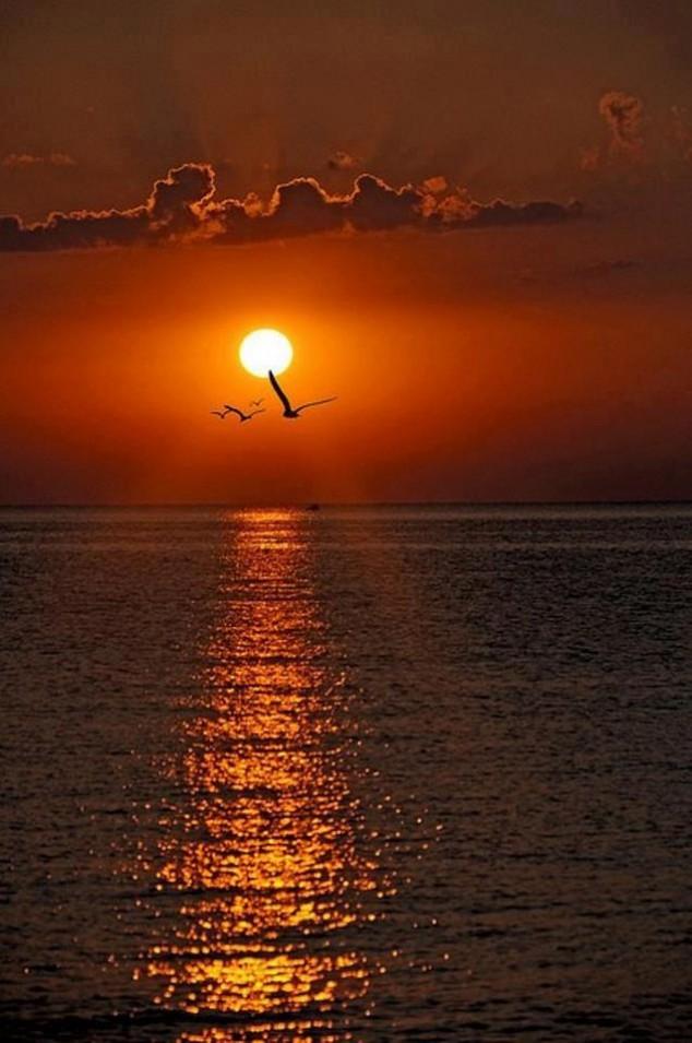 Beautiful-sunrise-on-The-Black-Sea-Varna-Bulgaria-634x955