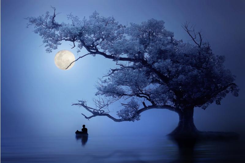 Datas especiais - Astrologia, dicas, pensamentos e meditação